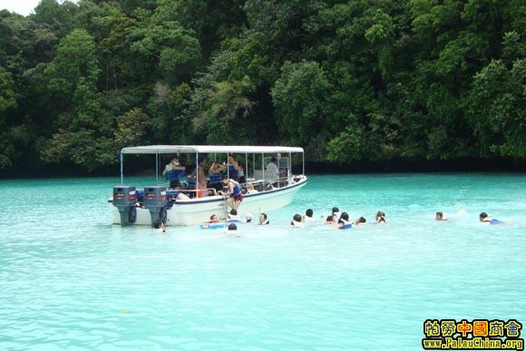 帕劳旅游指南之景点导览---牛奶湖